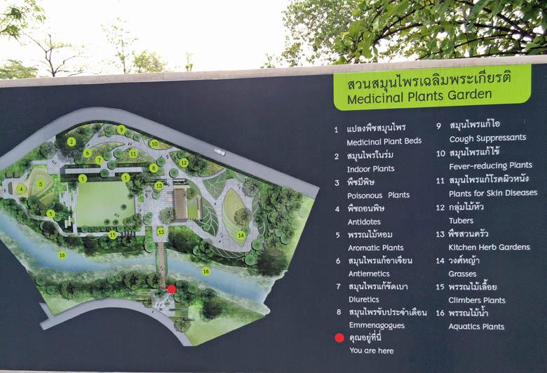 Medicinal Plant Garden in Bangkok Thailand