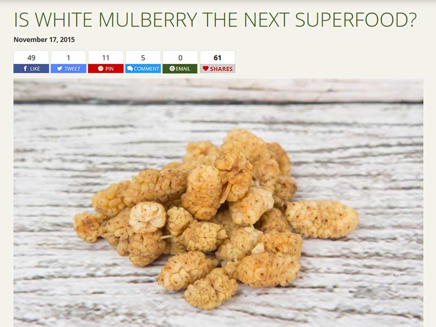 white mulberry is a food to help lower blood sugar