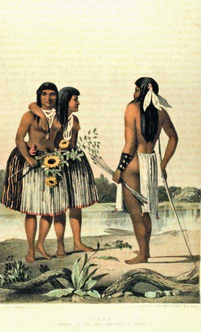 Southern California Ethnobotany Traditional Use Of Native
