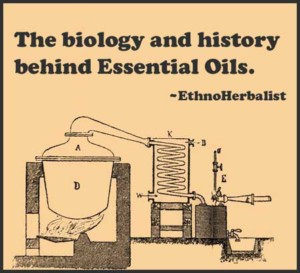 history essential oils